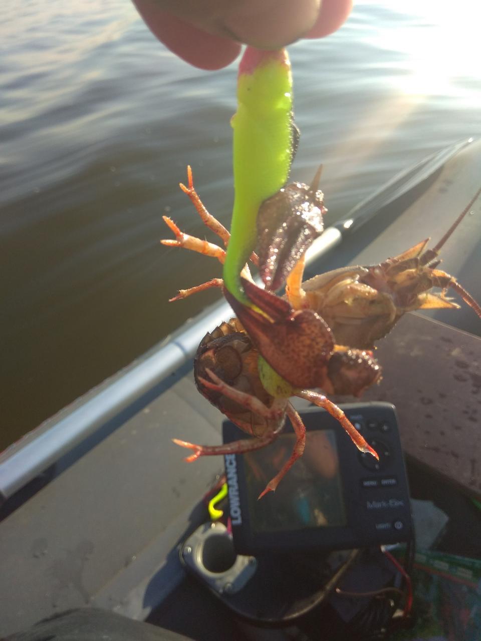 Были в субботу-воскресенье. Погода - дрянь ... | Отчеты о рыбалке в Беларуси