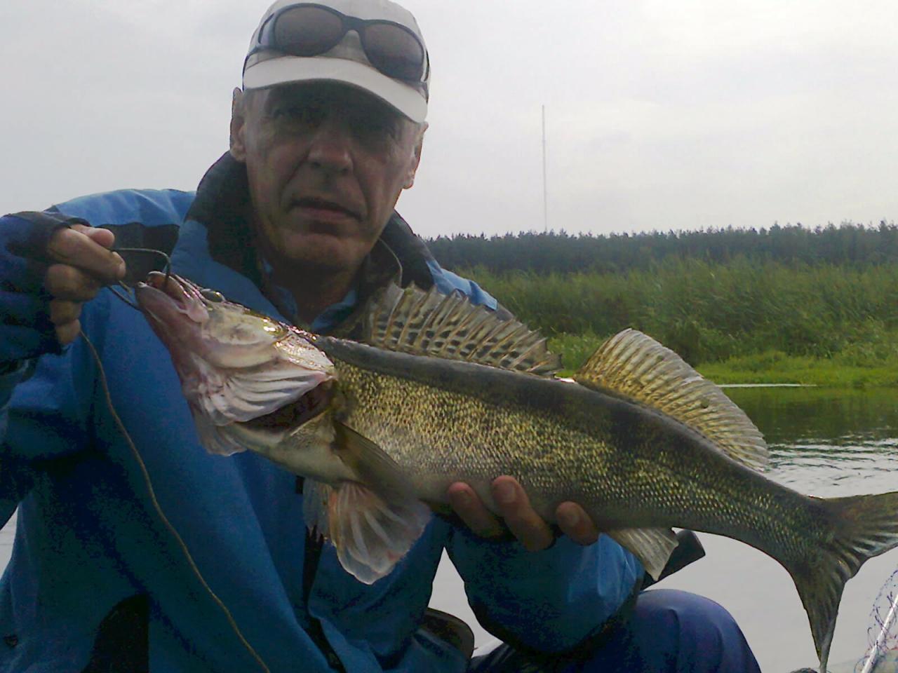 Ловили в эти выходные.По прежнему уровень воды в ... | Отчеты о рыбалке в Беларуси