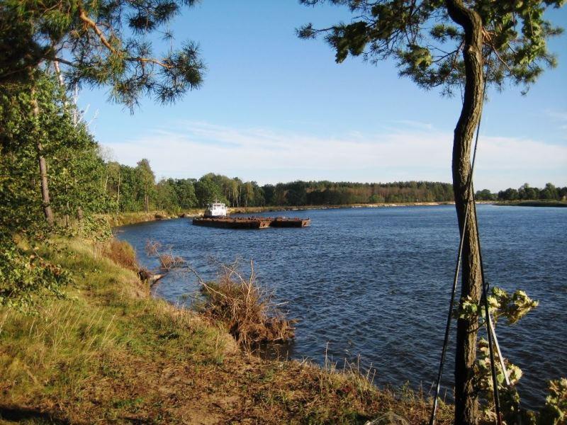 По приглашению товарища из Гомеля наконец-то сподобился посетить ... | Отчеты о рыбалке в Беларуси