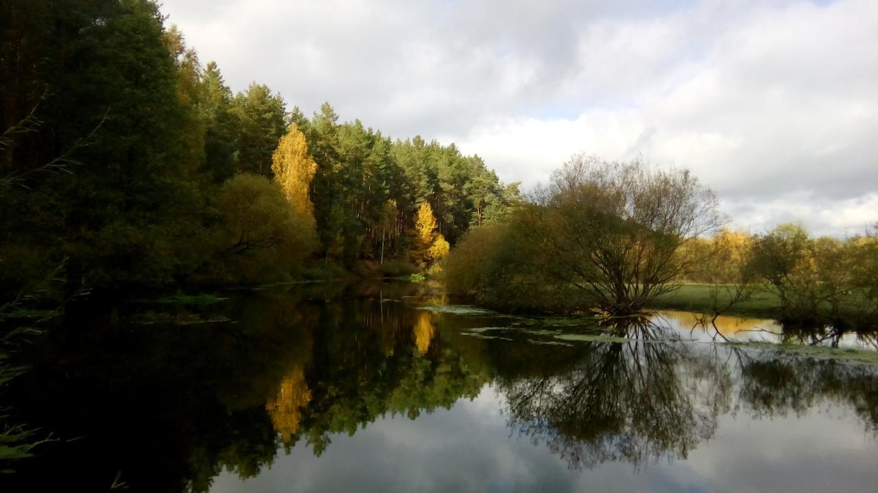 Опять захотелось на рыбалку. Любимая Вилия далековато, да ...   Отчеты о рыбалке в Беларуси