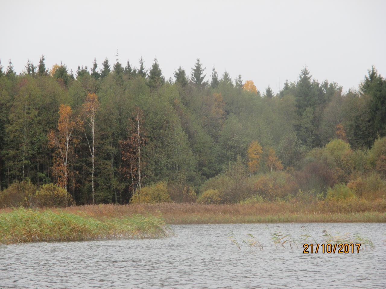 Суббота , вечер, тепло, сухо, сытно, лёгкая усталость ... | Отчеты о рыбалке в Беларуси