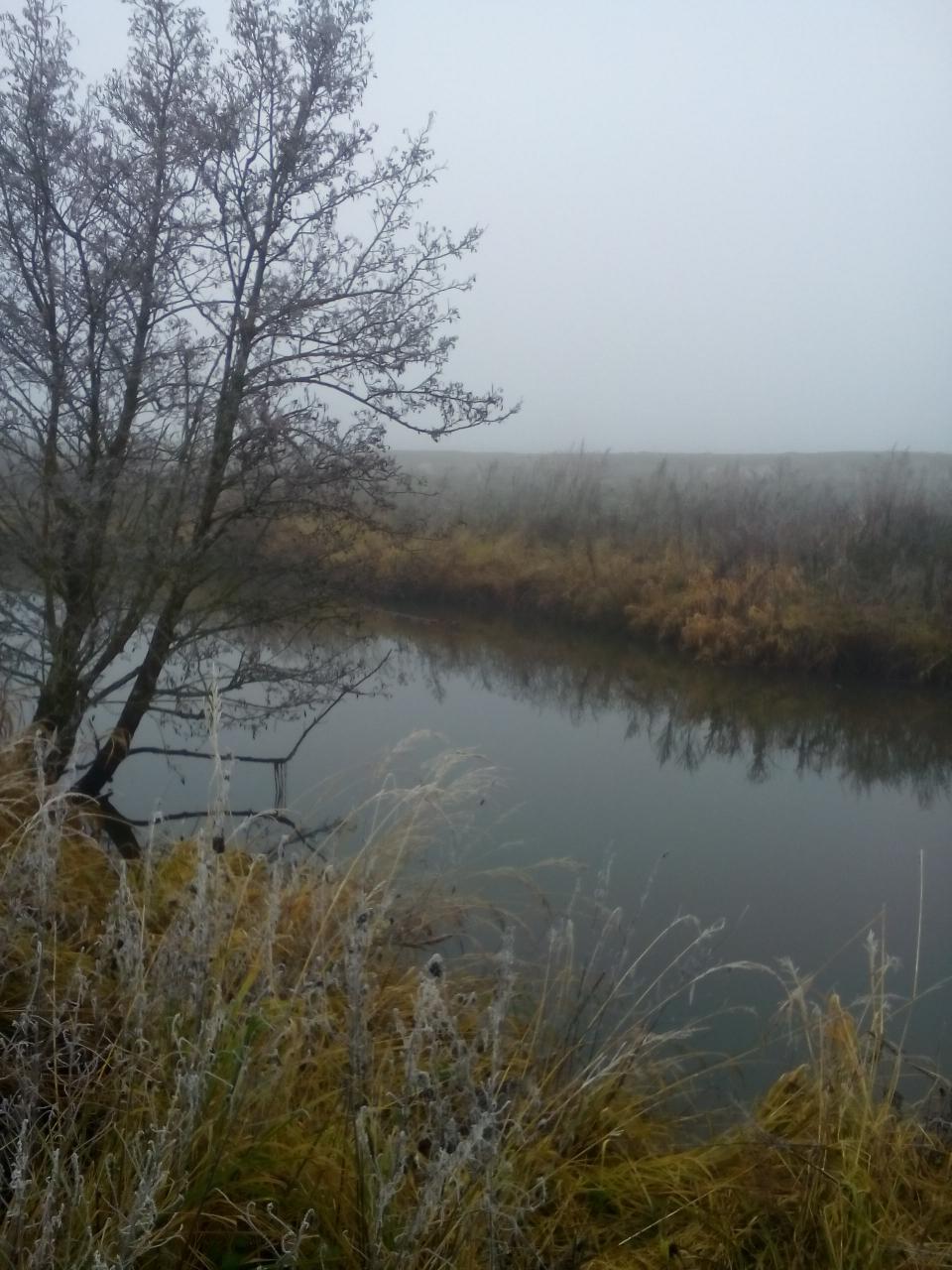 В понедельник 27.11 . Подсушив вещи и воспользовавшись ... | Отчеты о рыбалке в Беларуси