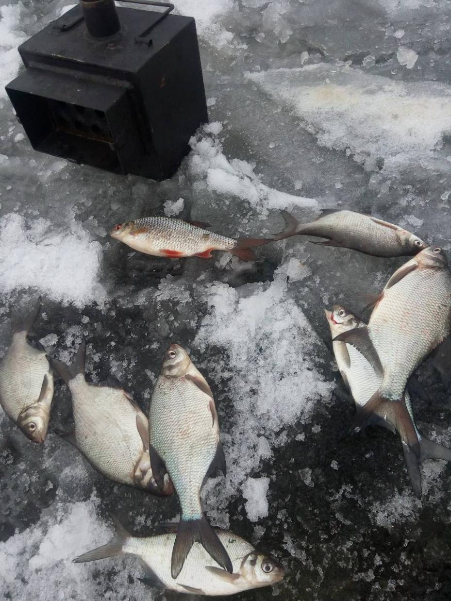 26 день ,ночь , спасалка ,глубина 8.2-8.5 м ... | Отчеты о рыбалке в Беларуси