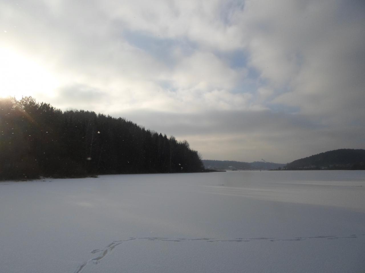 Ловил сегодня с 9:30 до 14:30,в том же ... | Отчеты о рыбалке в Беларуси