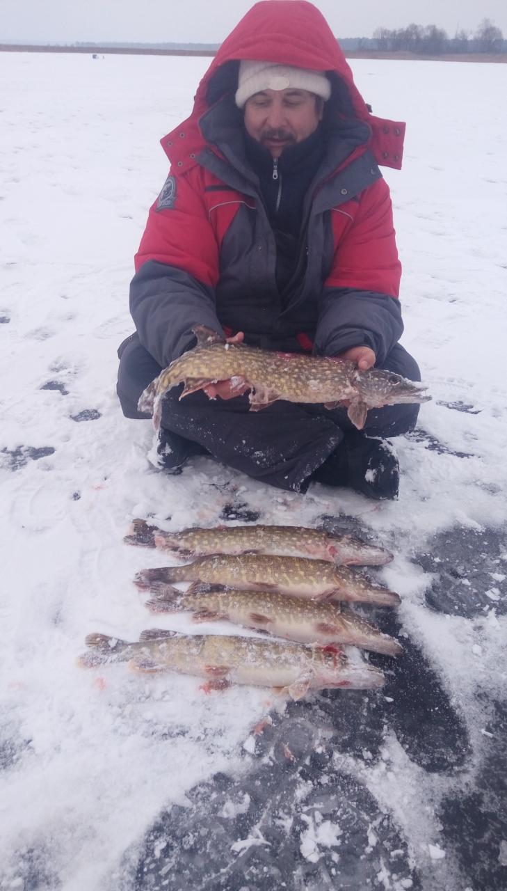 OrangeПривет всем! Вчера, несмотря на прогнозы и предупреждения ... | Отчеты о рыбалке в Беларуси