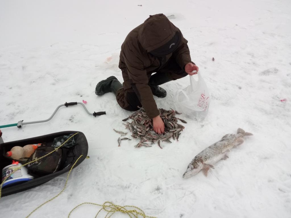 озера в белоруссии для рыбалки