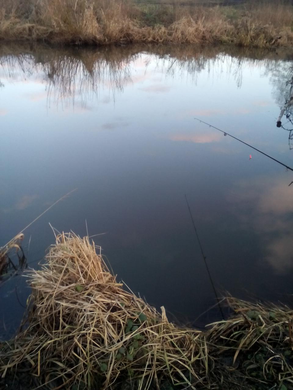 Всем привет. В субботу 6.01.18 зазвонил будильник на ... | Отчеты о рыбалке в Беларуси