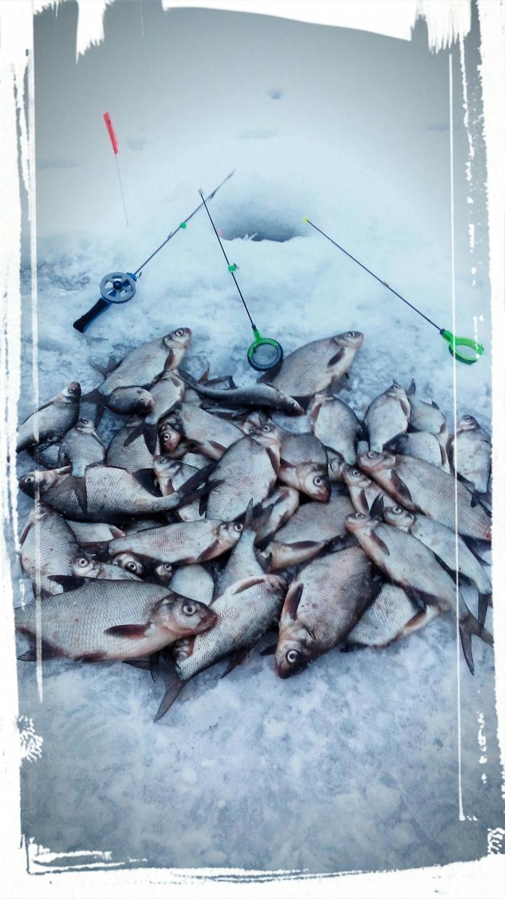 10 февраля 2018 г. ( суббота ) д.Ходорова ... | Отчеты о рыбалке в Беларуси