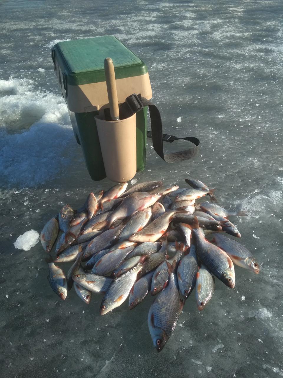 Вчера.Заходили на лёд со стороны Рабунского кладбища.Больше км ... | Отчеты о рыбалке в Беларуси