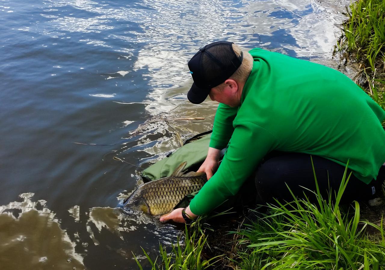 А вот и бонусы, которые были словлены вместе ... | Отчеты о рыбалке в Беларуси