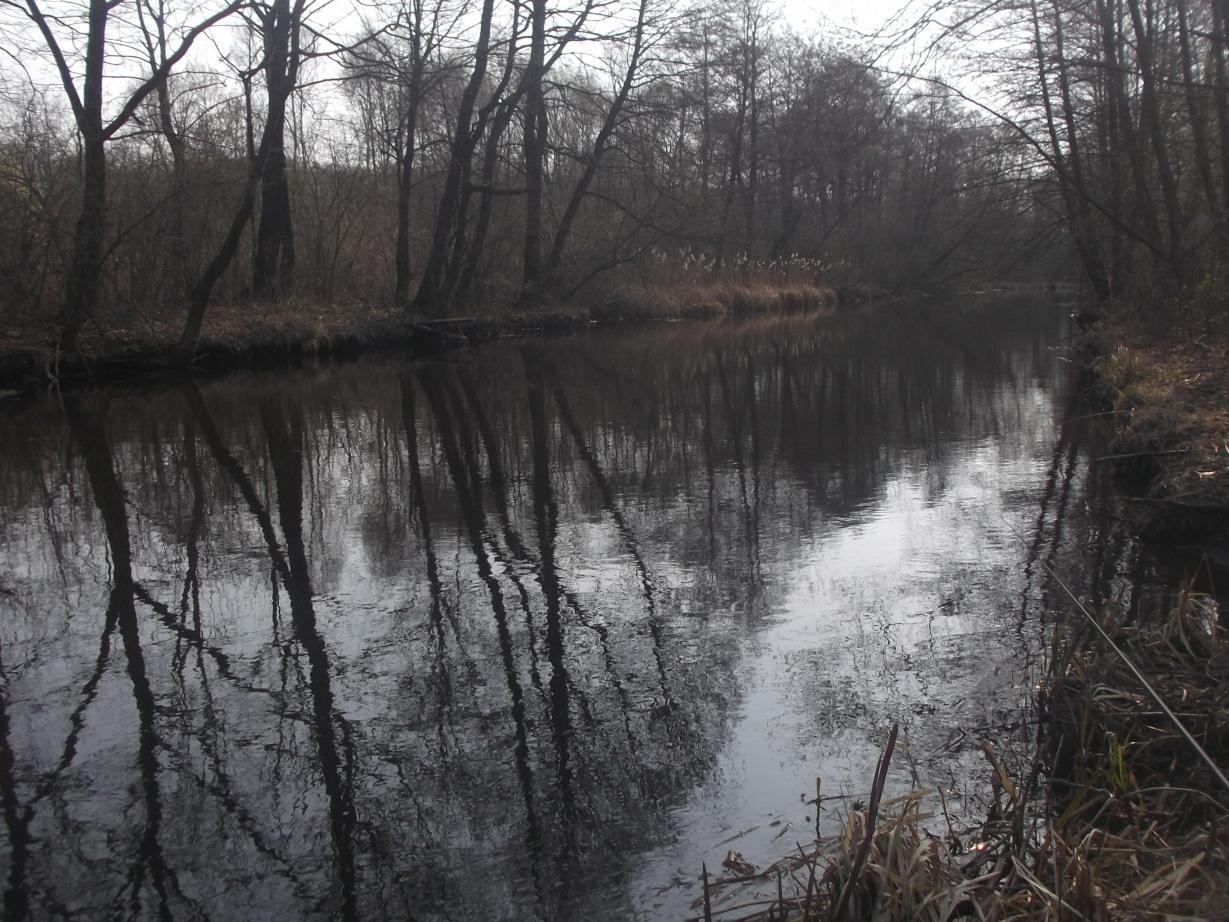 не спеша собравшись,к 10 прибыл на Осиповку.воды для ...   Отчеты о рыбалке в Беларуси