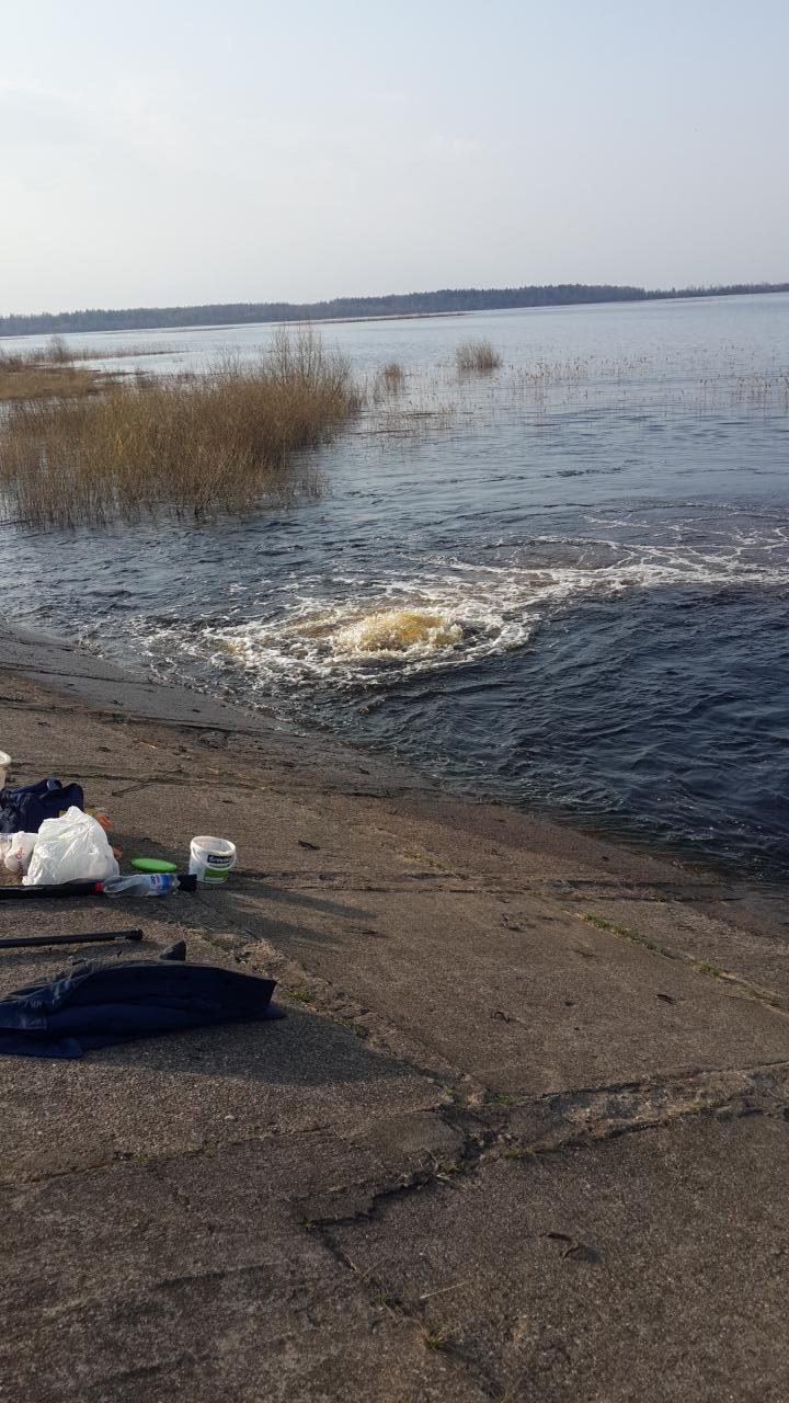 В воскресенье посетил озеро в компании с другом ... | Отчеты о рыбалке в Беларуси