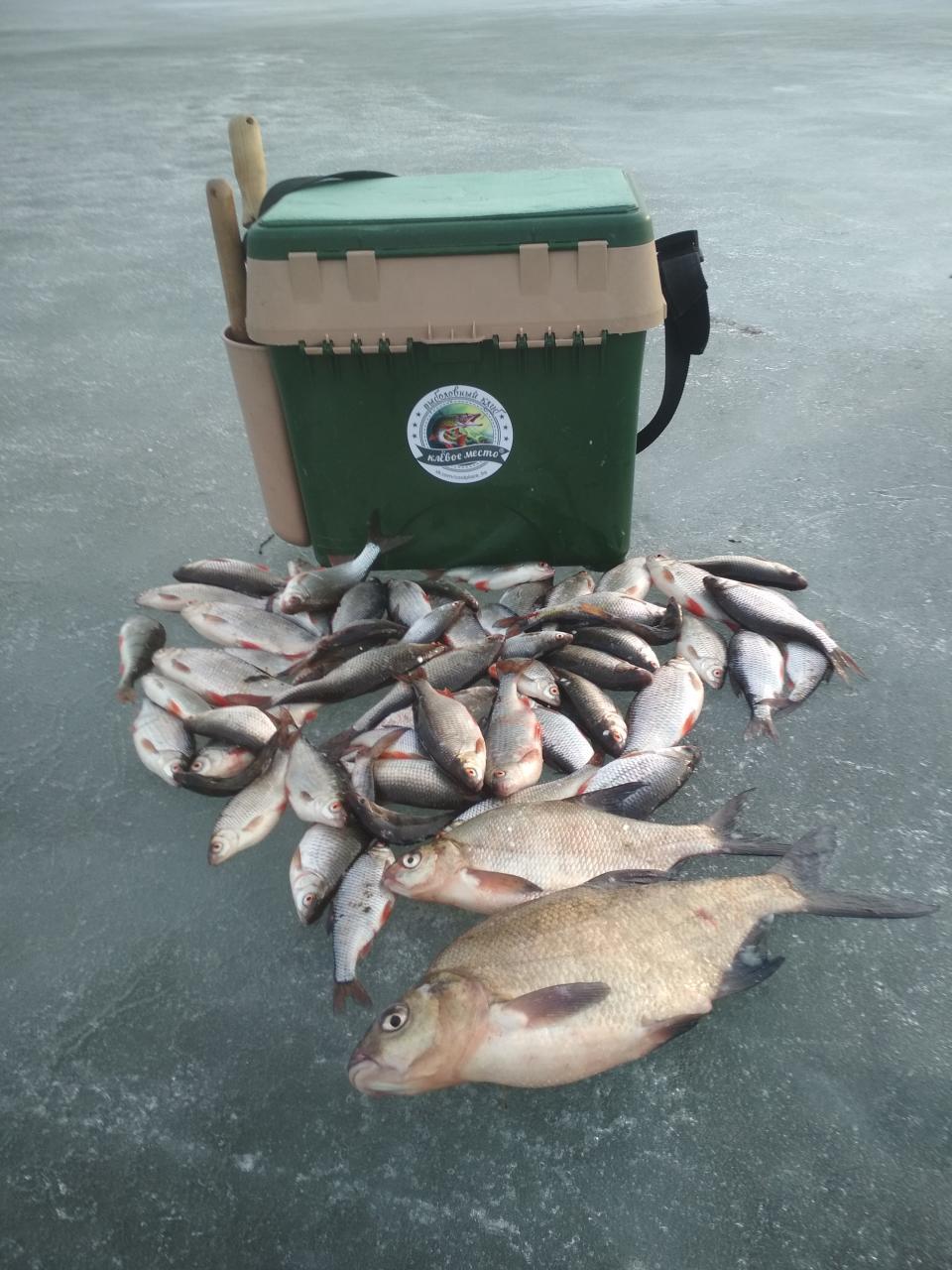 Вчера были в Рыбчино.Заход на лёд без проблем.Глубина ... | Отчеты о рыбалке в Беларуси