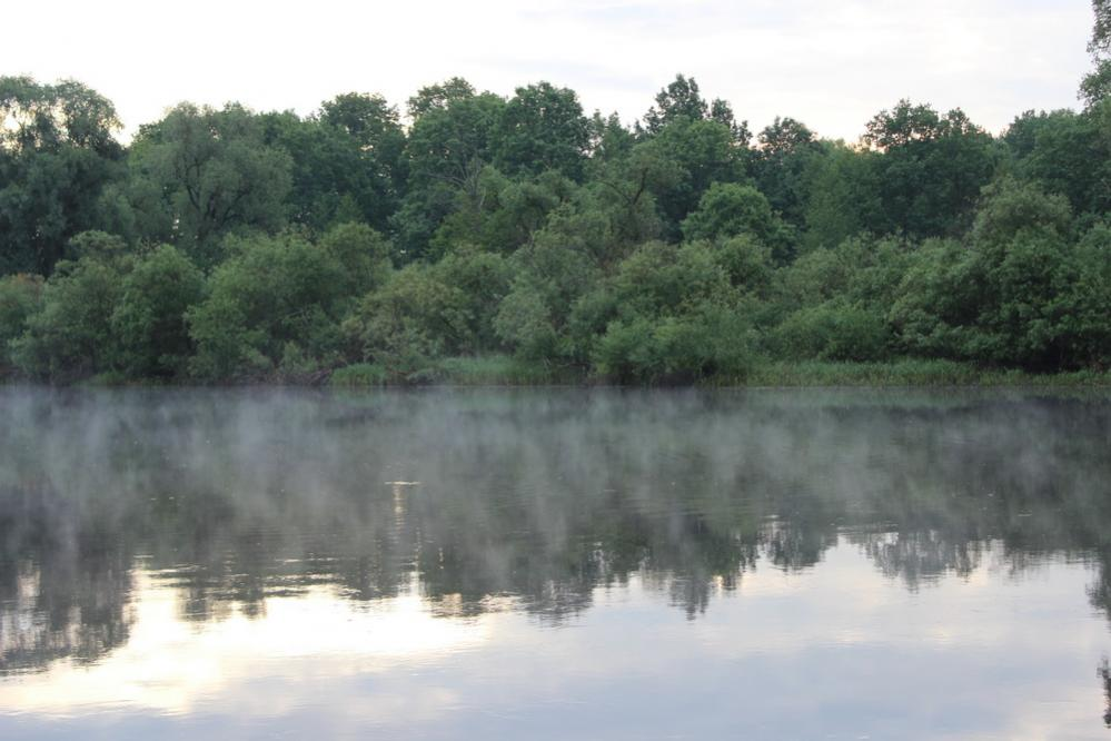 Добрался наконец-то в этом году до Березины. Дорога ... | Отчеты о рыбалке в Беларуси