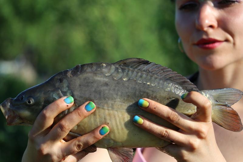 Рыбхоз Волма - платная рыбалка в Беларуси 2018 ... | Отчеты о рыбалке в Беларуси