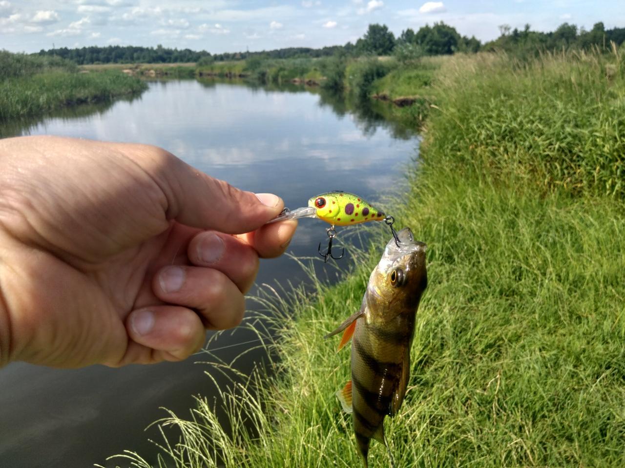 очень хотелось выехать раньше, а получилось позже... пробки ... | Отчеты о рыбалке в Беларуси