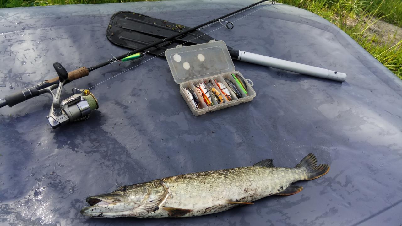Вечерами гонял в разные места, в основном матросы ...   Отчеты о рыбалке в Беларуси