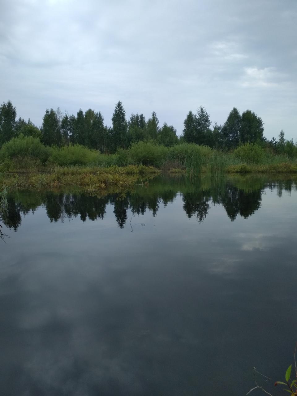 И я сегодня прикинулся жэстачайшэй жабай и решил ...   Отчеты о рыбалке в Беларуси