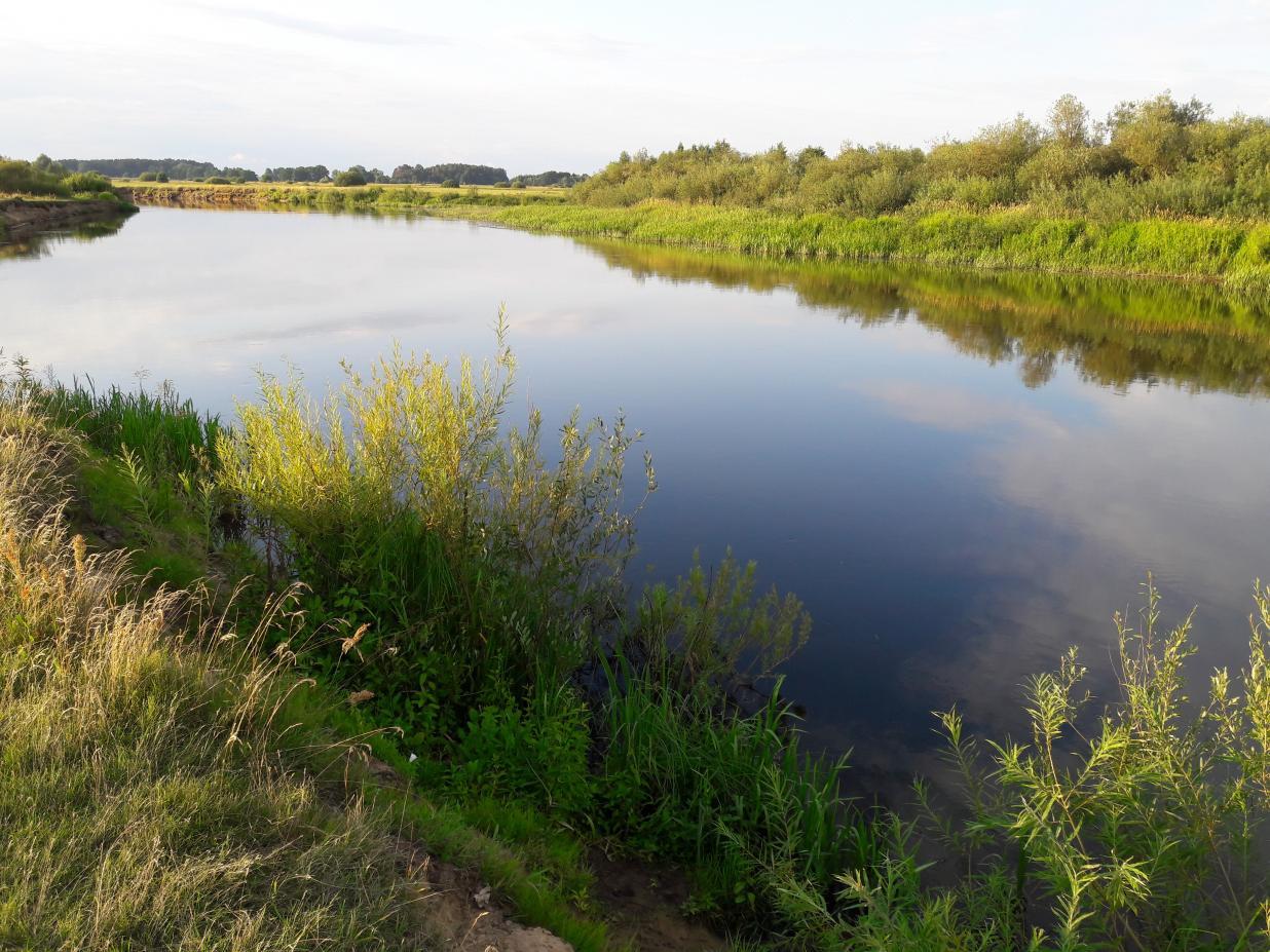 Ліпень. Тая пара, калі ўжо доўгія, цёплыя і ... | Отчеты о рыбалке в Беларуси