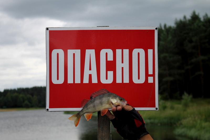 После не совсем удачной вылазки с крупновобами ... | Отчеты о рыбалке в Беларуси