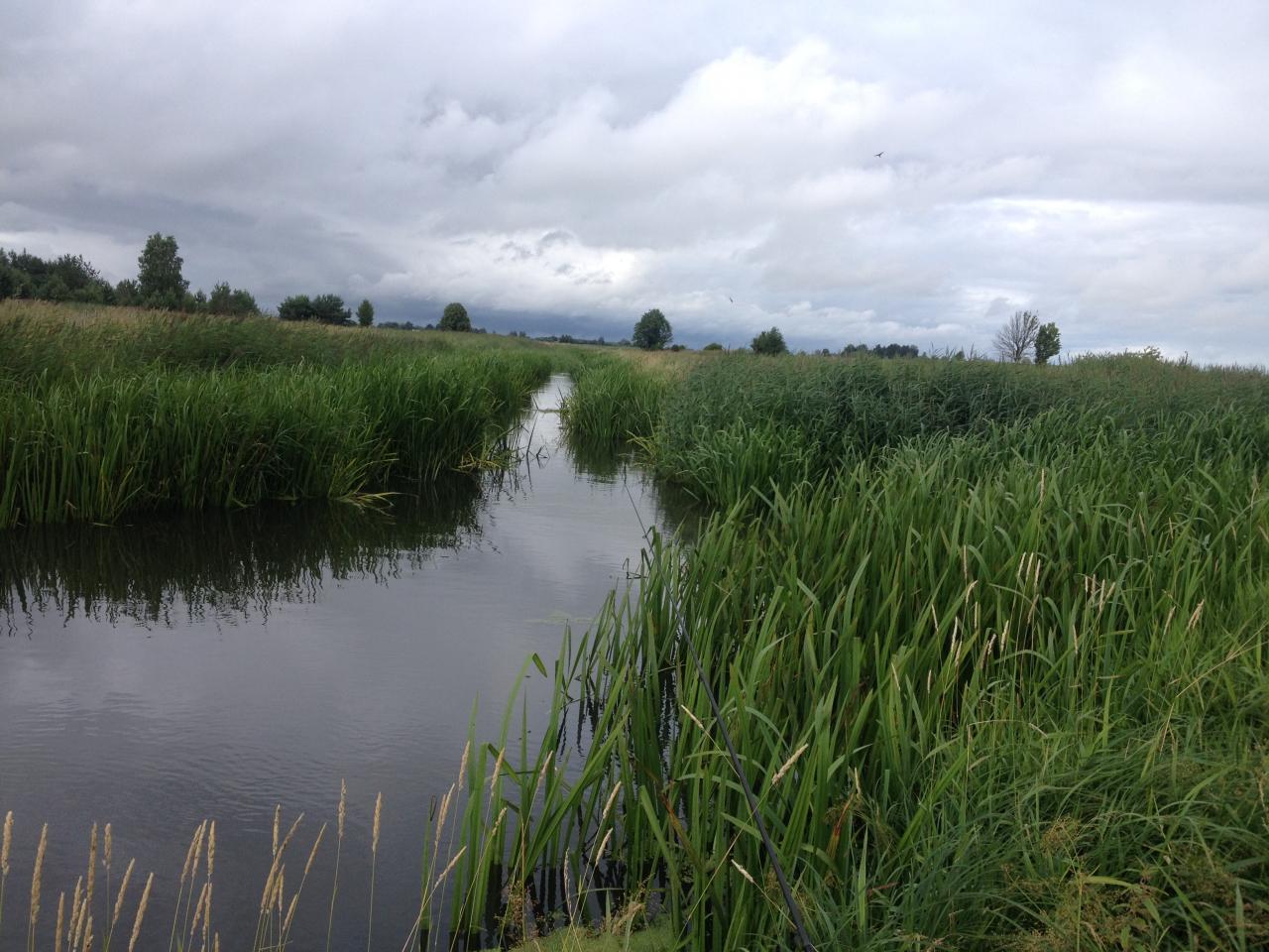 Вчера тоже из за погоды работы в деревне ... | Отчеты о рыбалке в Беларуси