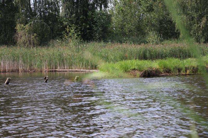 ООО Класбриг - платная рыбалка в Могилевской области (Осиповичи) ... | Отчеты о рыбалке в Беларуси