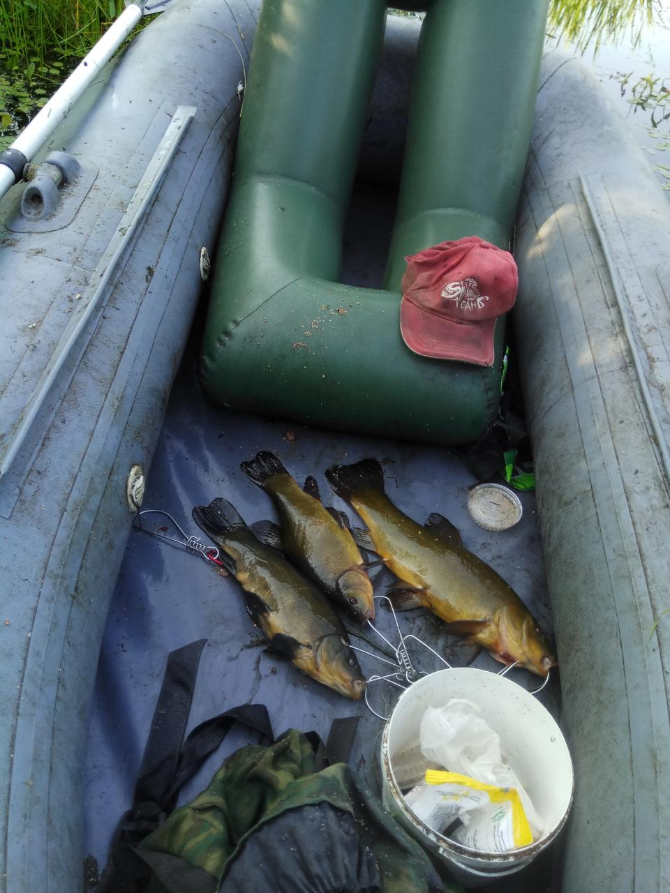 Субботнее утро, целенаправленно движусь к своему вчерашнему месту ... | Отчеты о рыбалке в Беларуси