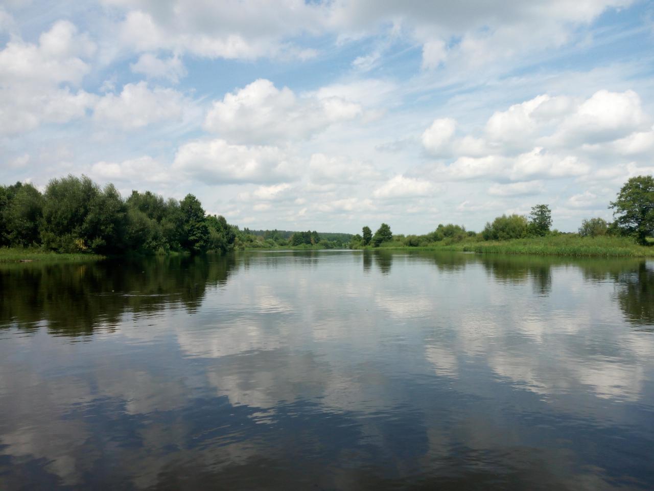 Вчера прокатился по Друти со спиннингом.Воды море! Течение ... | Отчеты о рыбалке в Беларуси
