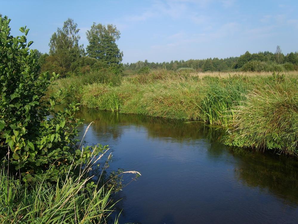 Давненько не писал в любимой ветке, да особо ... | Отчеты о рыбалке в Беларуси