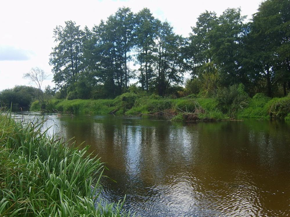 Вчера (16.09.2018г) с товарищем выбрались на реку со ... | Отчеты о рыбалке в Беларуси