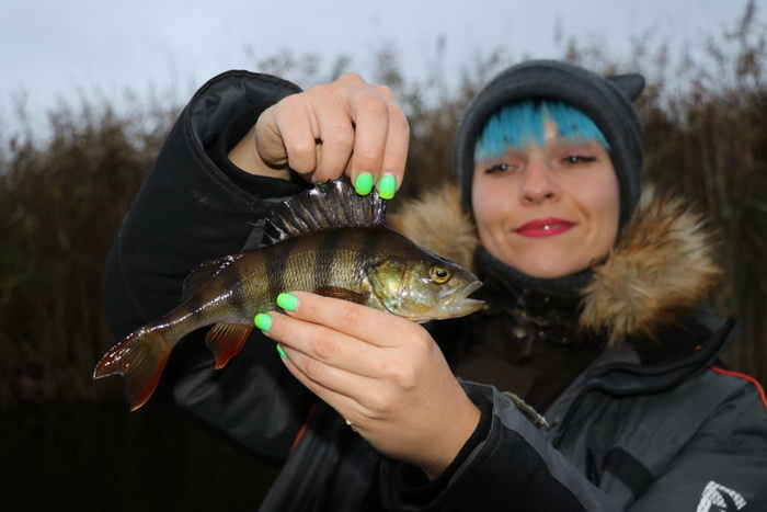 Ловля щуки на кружки - рыбалка на Сергеевских торфяниках...   Отчеты о рыбалке в Беларуси