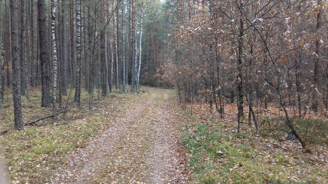Ну вот наконец-то и мне удалось вырваться погонять ... | Отчеты о рыбалке в Беларуси