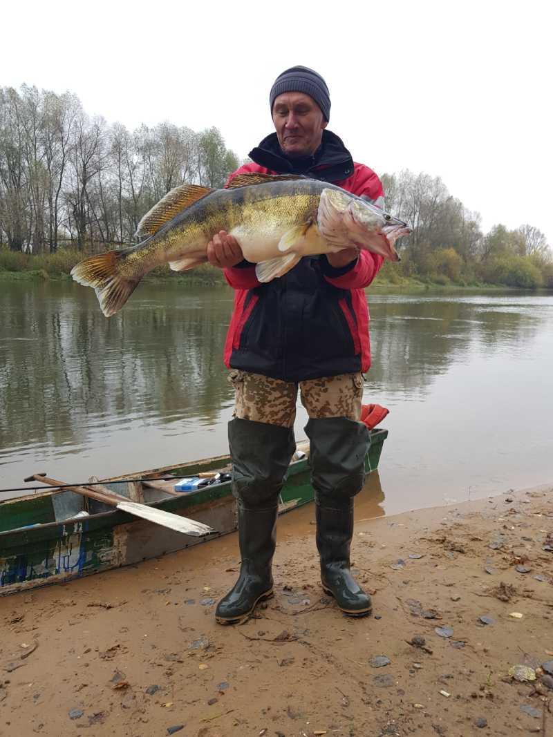 Сегодня на реке с 11-00 до 16-00  ... | Отчеты о рыбалке в Беларуси