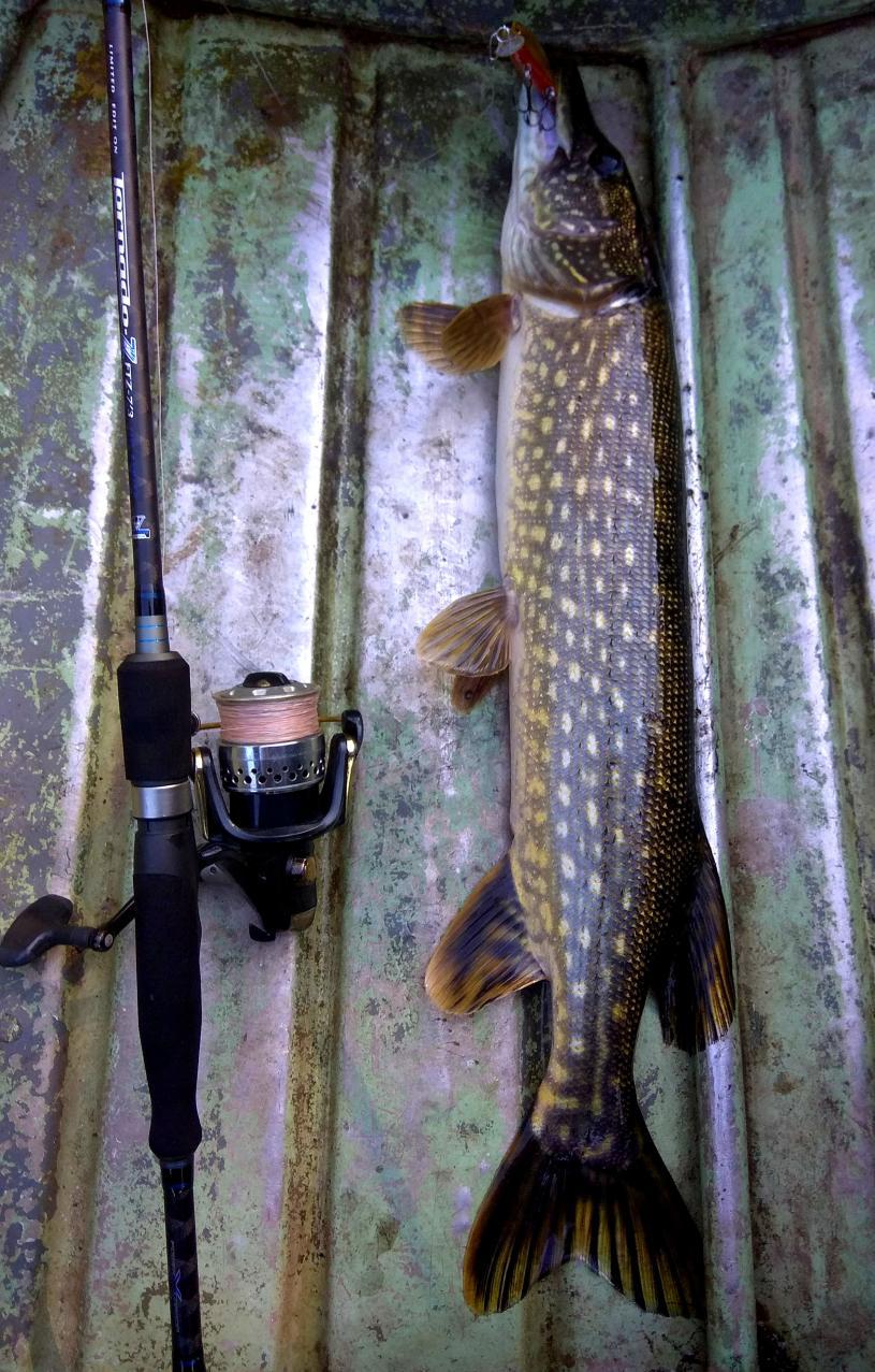 Сегодня снова выбрался на часа четыре , с ... | Отчеты о рыбалке в Беларуси