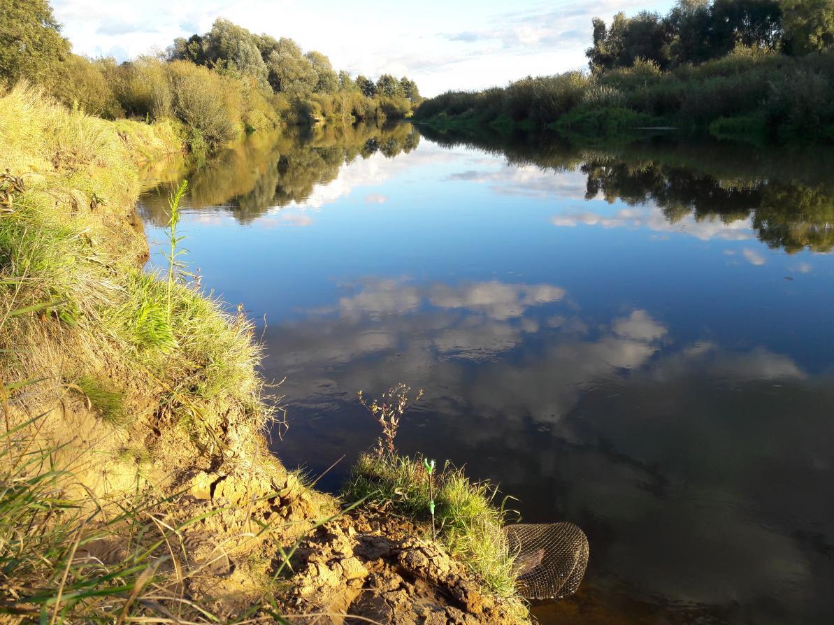 У апошні час, калі і атрымоўваецца вырвацца з ... | Отчеты о рыбалке в Беларуси