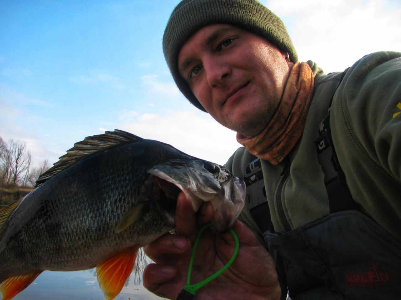 Был на Днепре в пограничной зоне, в районе ... | Отчеты о рыбалке в Беларуси
