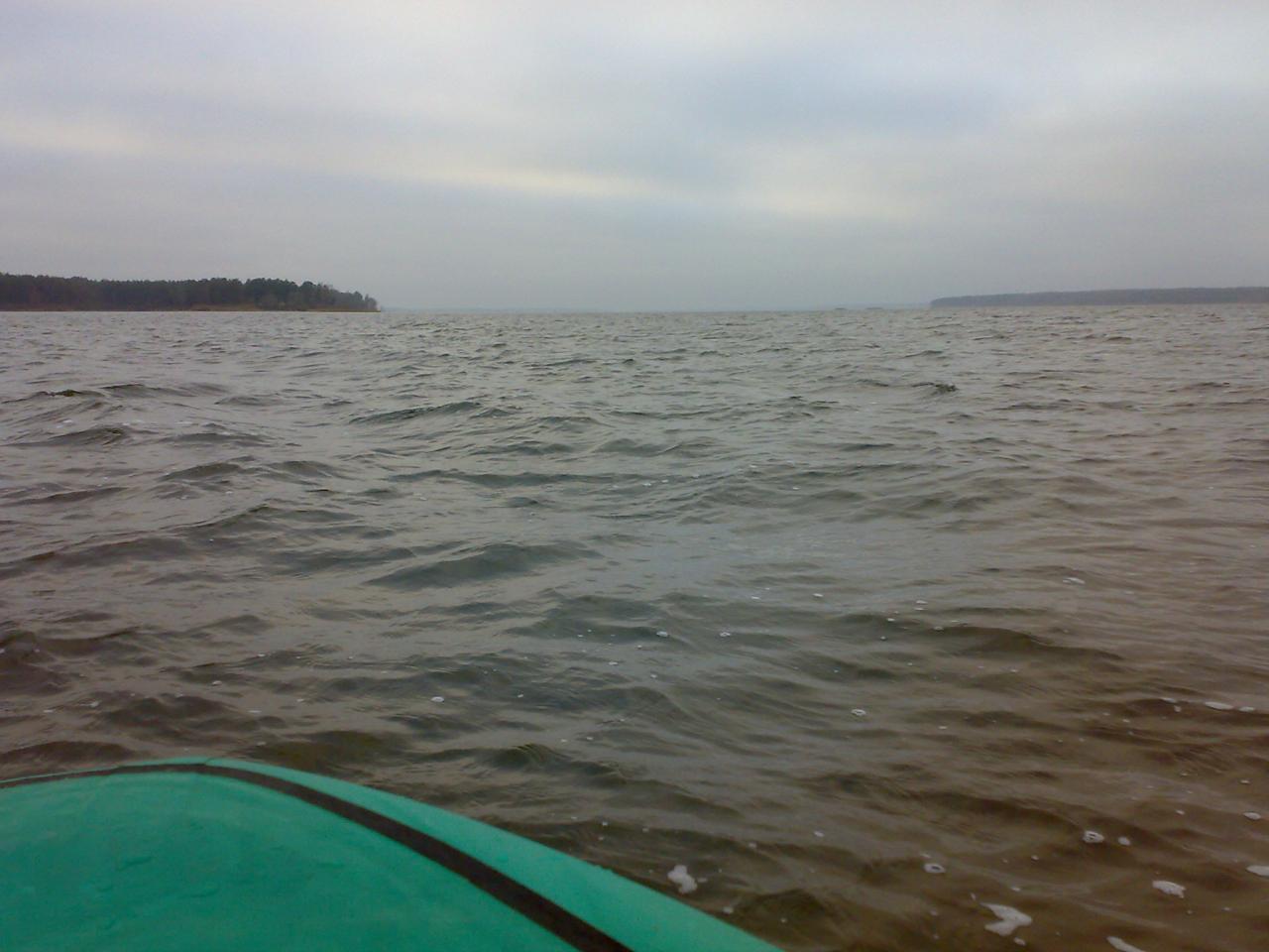 Полуживая какая-то ветка. В то же время присутствовали ... | Отчеты о рыбалке в Беларуси