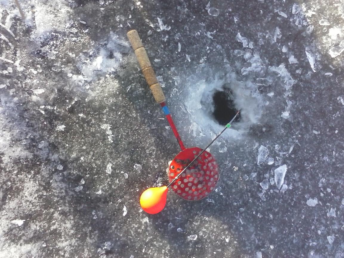 Сегодня открыл зимний сезон, рыбачил в районе Строчиц ... | Отчеты о рыбалке в Беларуси