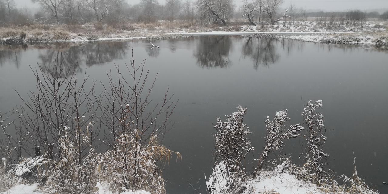 Сегодня отлично порыбачили в хорошей компании на красивой ... | Отчеты о рыбалке в Беларуси