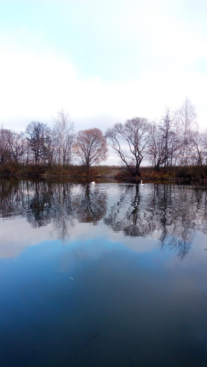 Сегодня с отцом посетили Семково,точнее выше немного по ... | Отчеты о рыбалке в Беларуси