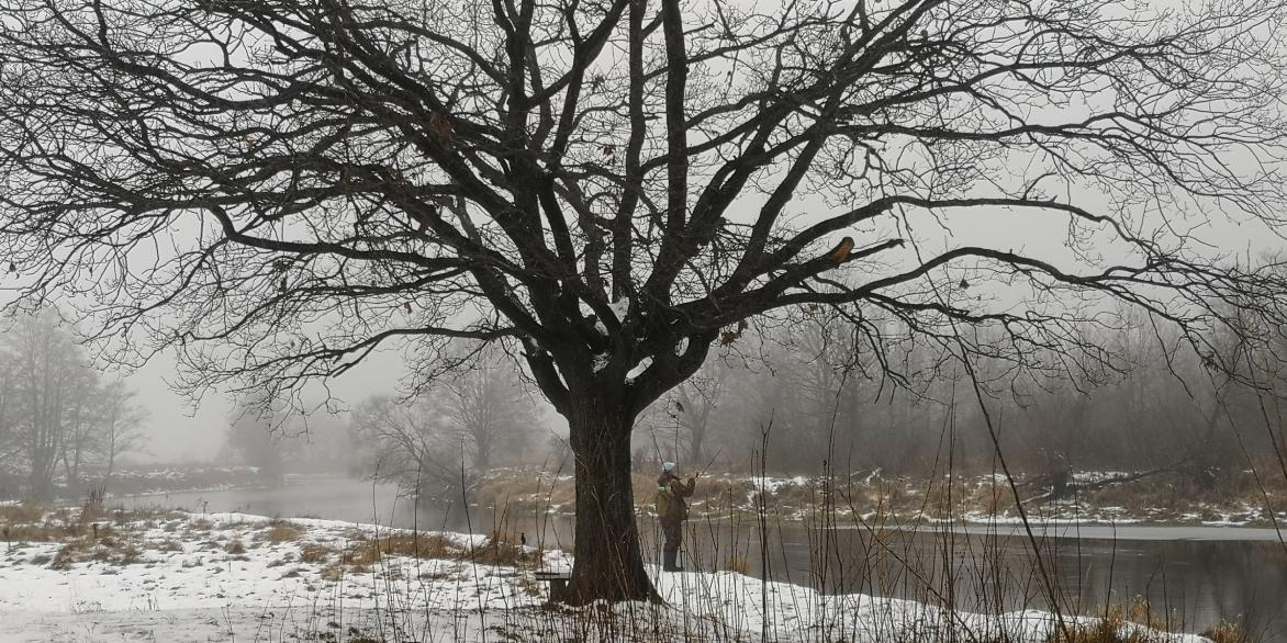 Сегодня выдалась хорошая погодка без мороза и ветра ... | Отчеты о рыбалке в Беларуси