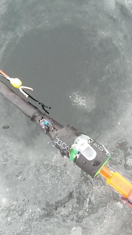 Вчера чуток половил и потестил свои новые заморочки ... | Отчеты о рыбалке в Беларуси
