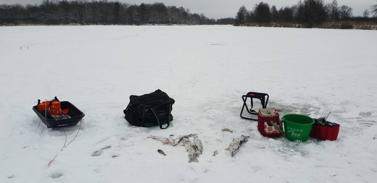 Во второй день щука бралапохуже, активность упала примерно ... | Отчеты о рыбалке в Беларуси
