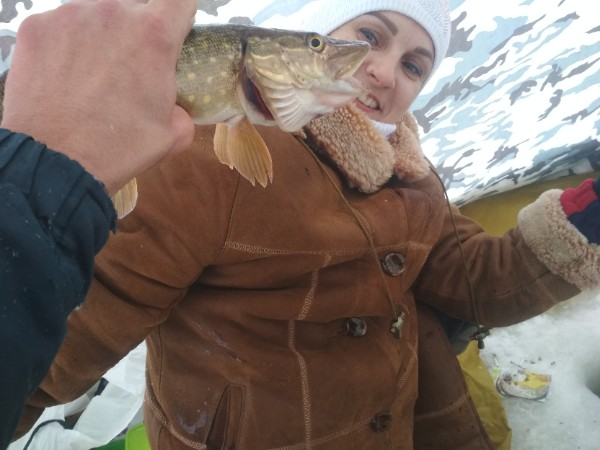 На Кошо в субботу зверствовал ёрш,клевал на всё.Белая ... | Отчеты о рыбалке в Беларуси