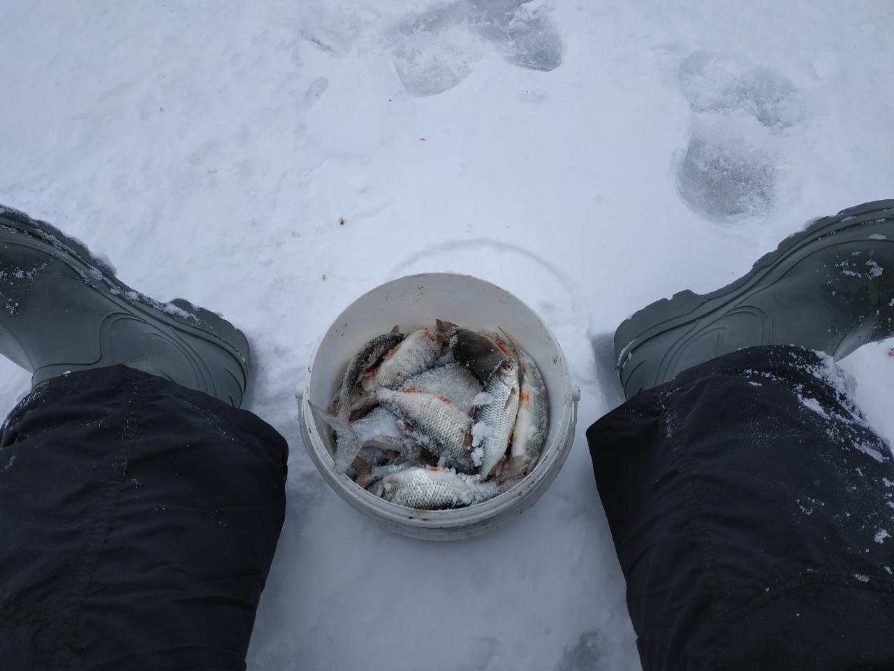 Сегодня вырвался на пару часиков (в 10 приехал ...   Отчеты о рыбалке в Беларуси