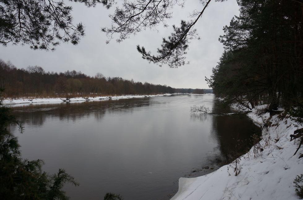 Что-то наша ветка на задворках оказалась, оживлю немного.)Навещал ... | Отчеты о рыбалке в Беларуси