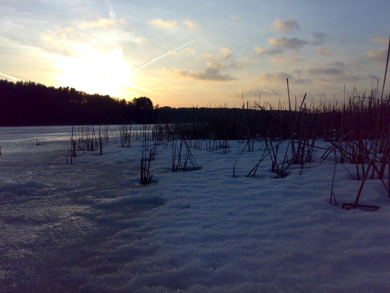 Сегодня с обеда и до темна по Вяче ... | Отчеты о рыбалке в Беларуси