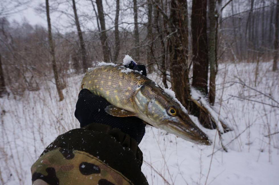 В среду случилась самая снежная рыбалка сезона