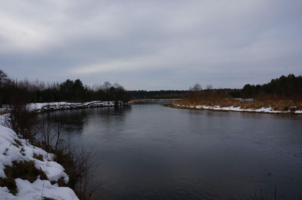 Вчера снова гулял по реке. Проверил участок выше ... | Отчеты о рыбалке в Беларуси