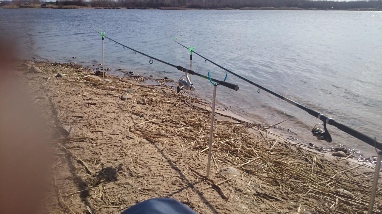 Был в воскресение возле холодного канала . Клевала ... | Отчеты о рыбалке в Беларуси